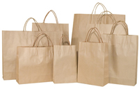 Brown Paper Carry Bags with handles