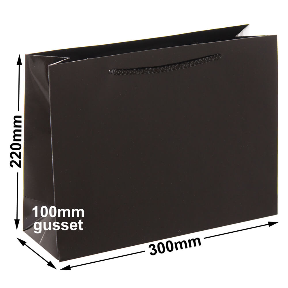 Black Small Gloss Bag<br>Boutique 220 x 300 *Pack 20*