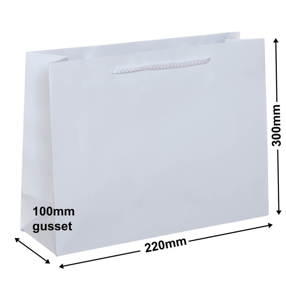 White Gloss Bag -Landscape<br>Small 300 x 220 *Pack 20**