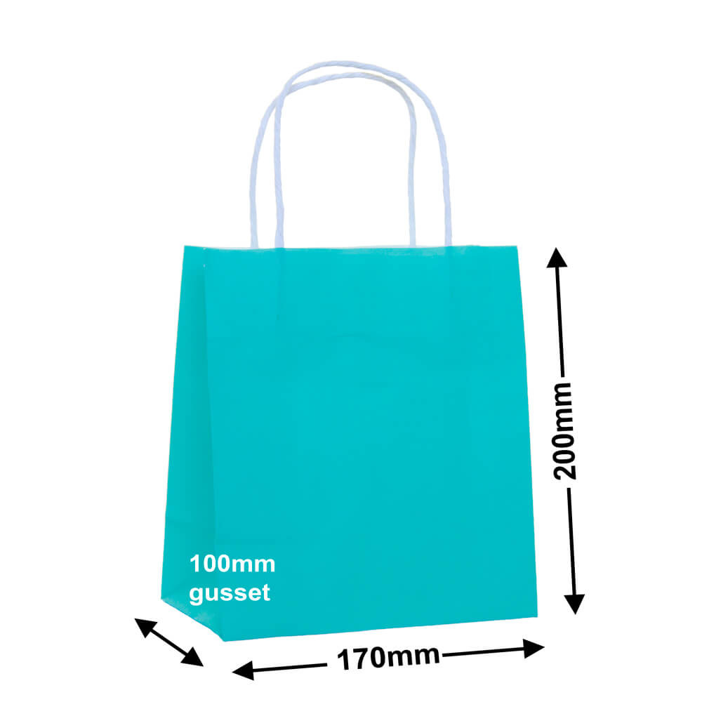 Paper Carry Bag Aqua Blue 170 x 200 +100