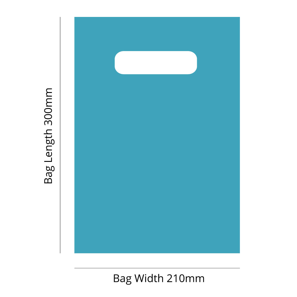 Small Plastic Carry Bag<br>Aqua 210 x 300 *Pack 100*